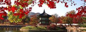Que visiter durant un séjour en Corée du Sud ?